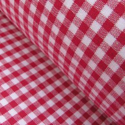 Small Gingham Check Ruby