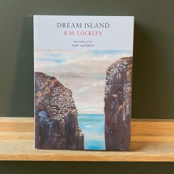 Dream Island by RM Lockley