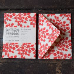 Patterned Envelopes Ditchling Leaf