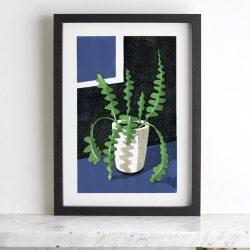 Fishbone Cactus by James Brown