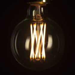 Globe LED Screw Light Bulb