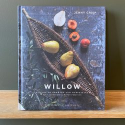 Willow by Jenny Crisp